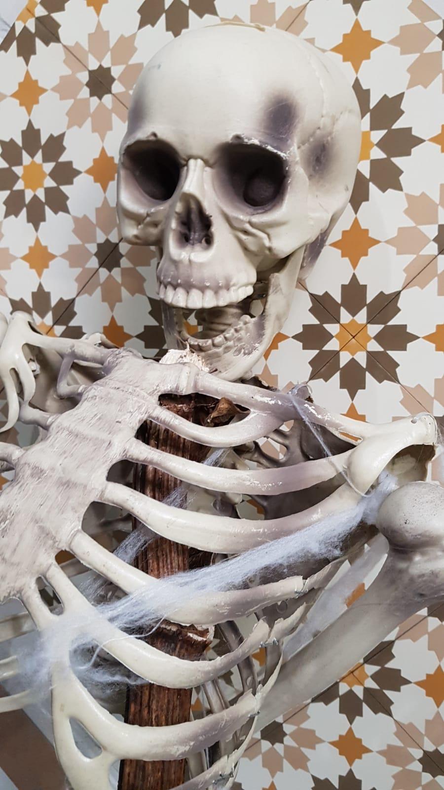 cementtiles halloween portugese tegels